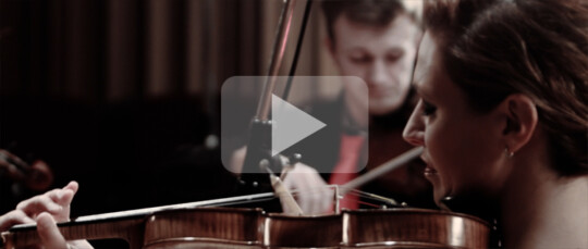 Recordings Ravel Video 1 Gwendolyn Masin